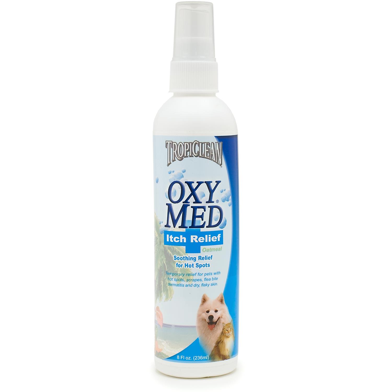 Top 3 Homemade Anti-Itch Dog Spray Recipes | Fab How