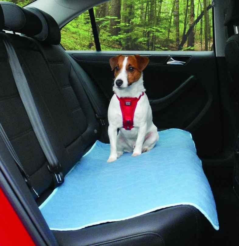 Kurgo Car Comforter for Dogs and Cats