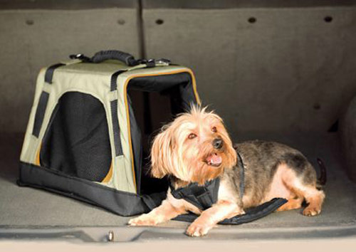 Kurgo Wander Carrier Portable Dog Crate