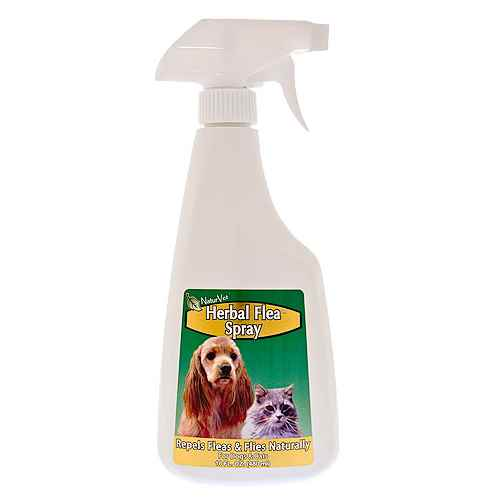 NaturVet Herbal Flea Spray for Dogs and Cats