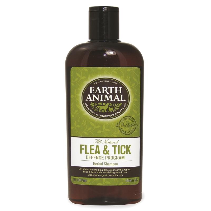 natural shampoo dogs