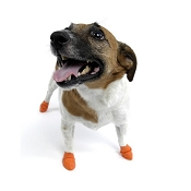 Pawz Extra-Small Orange Waterproof Dog Boots