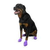 Pawz Large Purple Waterproof Dog Boots
