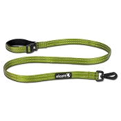 Alcott 5' Adventure Weekender Dog Leash with Reflective Stitching & Neoprene Padding, Green