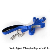 ThunderLeash Dog Leash Small, Blue