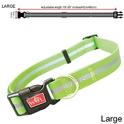 Wigzi Waterproof Dog Collar, Green, Large
