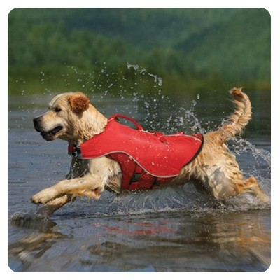 Kurgo Surf n Turf Dog Life Jacket, Extra-Small