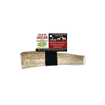 wapiti labs elk antler dog chew treat 8. Black Bedroom Furniture Sets. Home Design Ideas