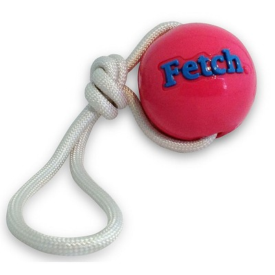 Planet Dog Orbee-Tuff Fetch Ball with Rope Dog Toy, Pink