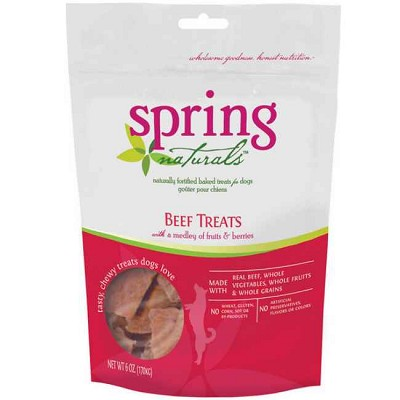 Spring Naturals Grain Free 95% Beef with Fruits & Berries Dog Treats